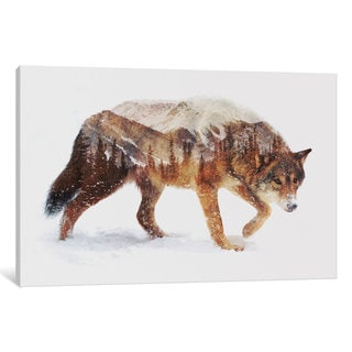iCanvas Arctic Wolf by Andreas Lie Canvas Print