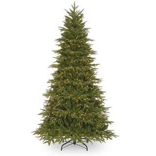 7.5 ft. Northern Frasier Fir Tree with Clear Lights
