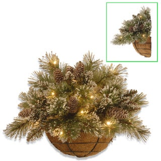 "20"" Glittery Bristle Pine Wall Decor with Battery Operated Warm White LED Lights"