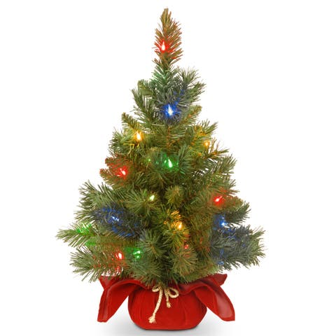 """National Tree Company 24"""" Majestic Fir Christmas Tree with Battery Operated Multicolor LED Lights"""