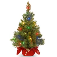 """24"""" Majestic Fir Tree with Battery Operated Multicolor LED Lights"""