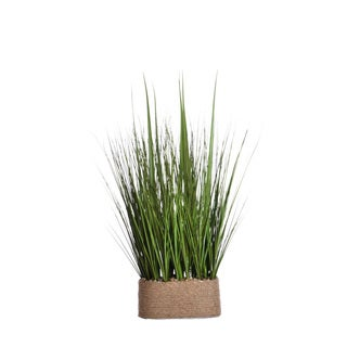 28-inch Tall Onion Grass in Hemp Rope Container 23x15x28