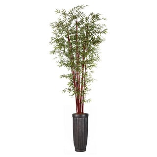 113-inch Tall Harvest Bamboo Tree in Planter