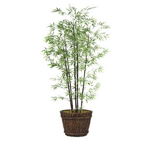 80-inch Bamboo Tree in Planter