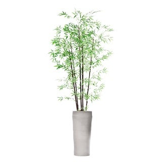 93-inch Tall Bamboo Tree in Planter