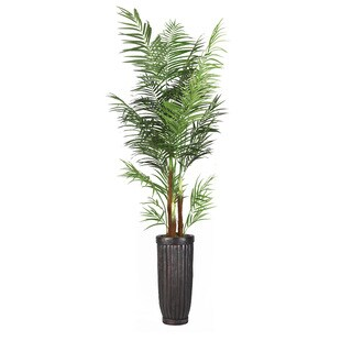 97-inch Tall Areca Palm Tree in Planter