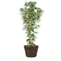 80-inch Bamboo Tree in Natural Poles in Planter