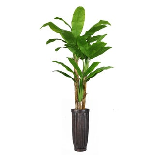93-inch Tall Banana Tree with Real Touch Leaves in Planter