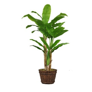 80-inch Tall Banana Tree with Real Touch Leaves in Planter