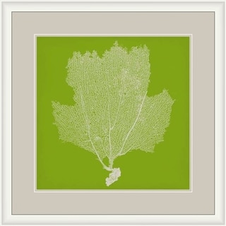 "Seaweed Tricia Square Framed Giclee on Paper 29"" x 29"""