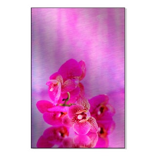 Gallery Direct Beautiful Orchid on Pink Background Print on Metal Wall Art