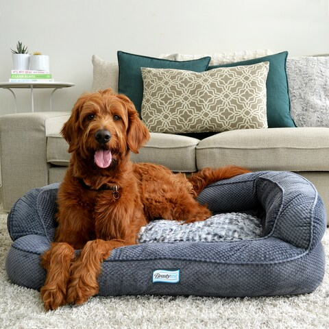 Simmons Beautyrest Colossal Rest Orthopedic Memory Foam Dog Bed