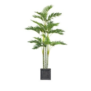 Laura Ashley 74-inch Palm Tree in Planter