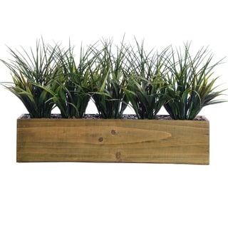 Tall Grass In Wooden Pot