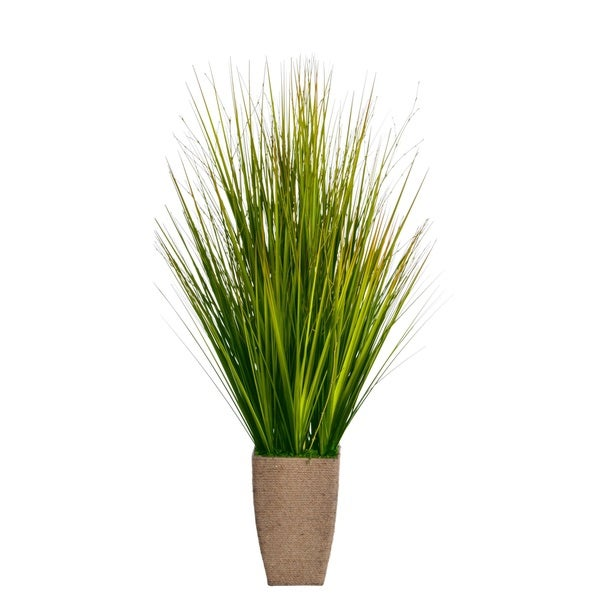 Laura Ashley 37-inch Onion Grass in Hemp Rope Planter