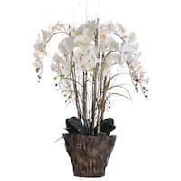 38 Inch Tall Orchid Arrangement in Fiberstone Pot