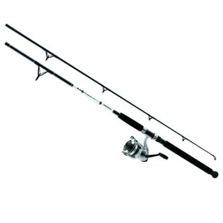 Daiwa D-Wave Saltwater 2-Piece Spinning Combo 10-foot