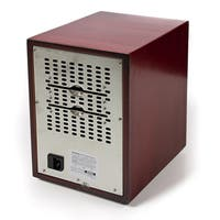 New Comfort Ozone Air Purifier and Odor Remover