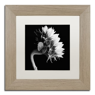 Michael Harrison 'Sunflower' White Matte, Birch Framed Wall Art