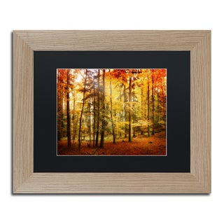 Philippe Sainte-Laudy 'Fall Color' Black Matte, Birch Framed Wall Art