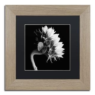 Michael Harrison 'Sunflower' Black Matte, Birch Framed Wall Art