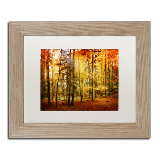Philippe Sainte-Laudy 'Fall Color' White Matte, Birch Framed Wall Art