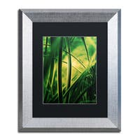 Philippe Sainte-Laudy 'Miniature' Black Matte, Silver Framed Wall Art