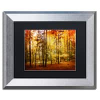 Philippe Sainte-Laudy 'Fall Color' Black Matte, Silver Framed Wall Art