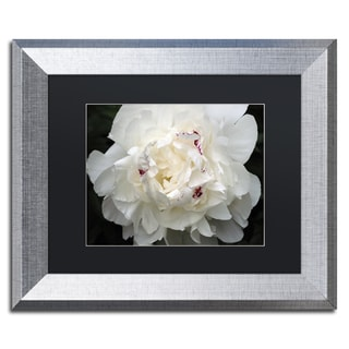 Kurt Shaffer 'Perfect Peony' Black Matte, Silver Framed Wall Art