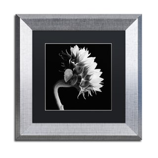 Michael Harrison 'Sunflower' Black Matte, Silver Framed Wall Art