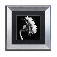 Michael Harrison 'Sunflower' Black Matte, Silver Framed Wall Art