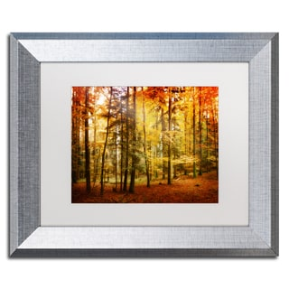 Philippe Sainte-Laudy 'Fall Color' White Matte, Silver Framed Wall Art
