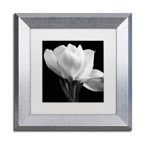 Shop Michael Harrison \'Gardenia\' White Matte, Silver Framed Wall Art ...