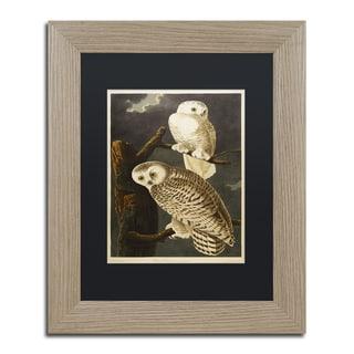 John James Audubon 'Snowy Owl' Black Matte, Birch Framed Wall Art
