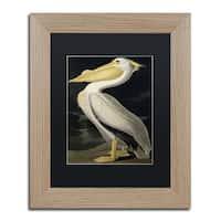 John James Audubon 'American White Pelican' Black Matte, Birch Framed Wall Art
