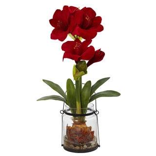 24-inch Amaryllis w/Vase