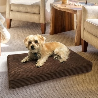 Animal Planet Corduroy Orthopedic Dog Mat