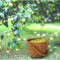 Small Wood Chip Apple Picking Basket