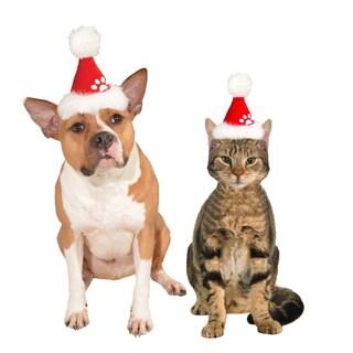 Rubies Pet Shop Red Santa Hat