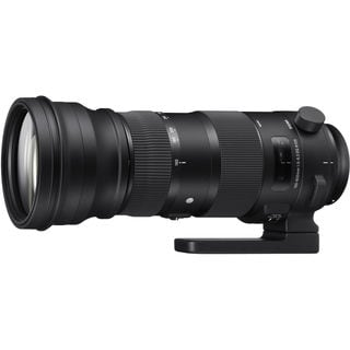 Sigma 150-600mm Sports Lens for Nikon