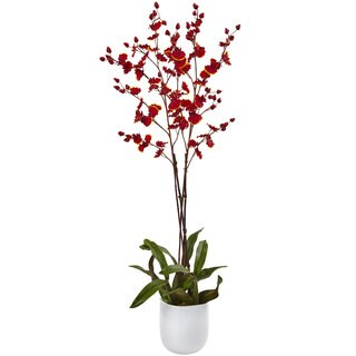Dancing 36-inch Orchid with White Glass Vase