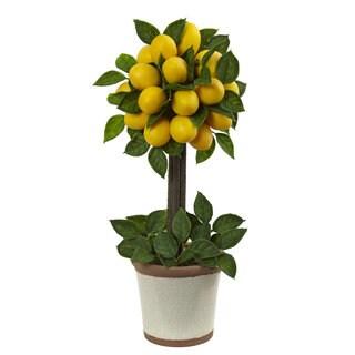 Lemon Ball 18-inch Topiary Arrangement