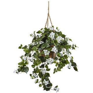 Bougainvillea 28-inch Hanging Basket