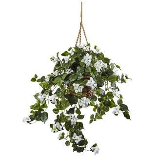 Bougainvillea 28-inch Hanging Basket