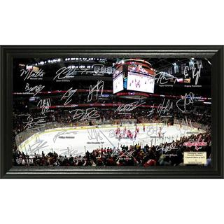 Washington Capitals Signature Rink