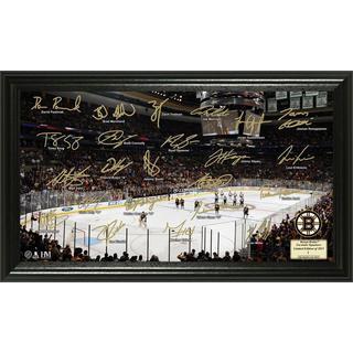 Boston Bruins Signature Rink