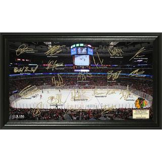Chicago Blackhawks Signature Rink