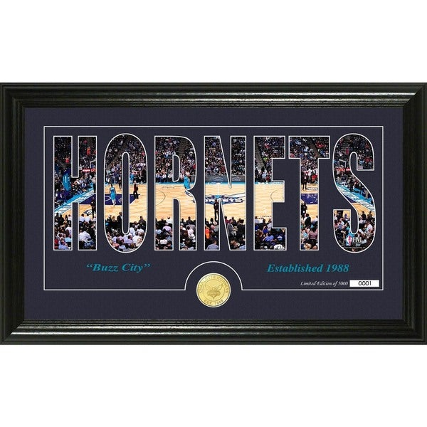 """Charlotte Hornets """"Silhouette"""" Bronze Coin Photo Mint"""