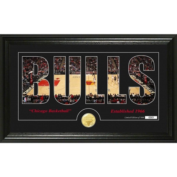 "Chicago Bulls ""Silhouette"" Bronze Coin Photo Mint"
