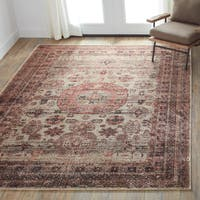 Traditional Brown/ Multi Medallion Distressed Rug - 6'7 x 9'2